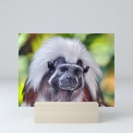 The Cotton-top Tamarin Mini Art Print