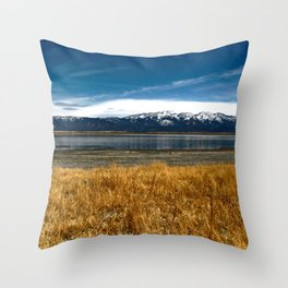 Almost to New Mexico Throw Pillow
