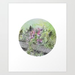 Sidewalk Flowers Art Print