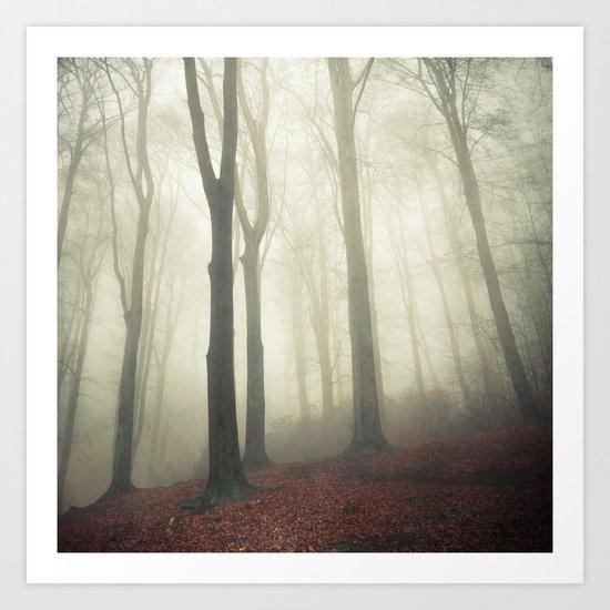 forest in fog Art Print