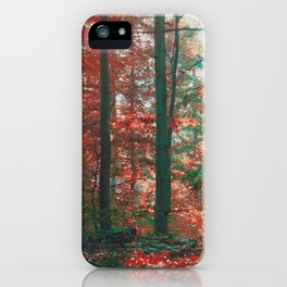 into the woods 11 iPhone Case