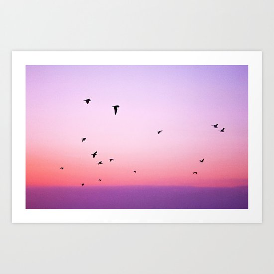 birds in the sky rose Art Print