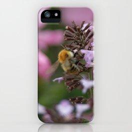 Honey Bee After Pollen iPhone Case