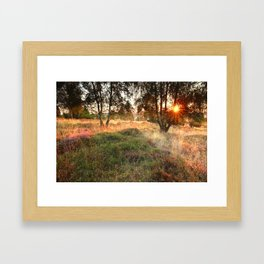 Morning shadows Framed Art Print