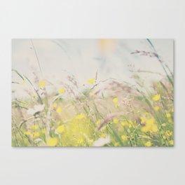 lazy hazy summer days ... Canvas Print