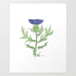 Thistle Botanical Watercolor Art Print