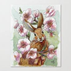 Amandine - Rabbit and flowers Canvas Print
