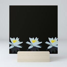 Waterlily Flowers On Black Background #decor #society6 #buyart Mini Art Print