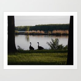 feathered friends Art Print