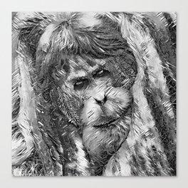 AnimalArtBW_OrangUtan_20170901_by_JAMColorsSpecial Canvas Print