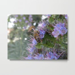 Bees on Buddleia Metal Print