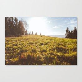dreambig Canvas Print