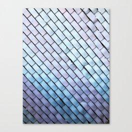 Fenced. Canvas Print