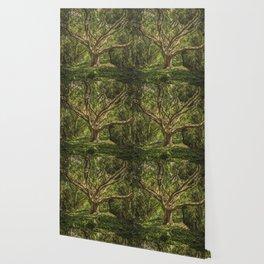 Spirits inside the wood Wallpaper