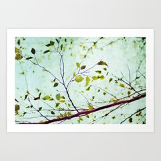 leaves of summer Art Print