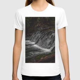Hidden Turtle Waterfall T-shirt