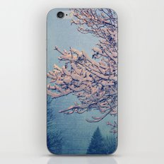 Snow Day iPhone & iPod Skin
