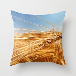 treasures of summer Throw Pillow