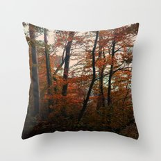 Autumn in the woods 3 Throw Pillow