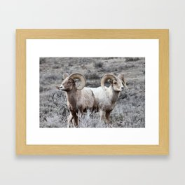 The Alchemy of Two Framed Art Print