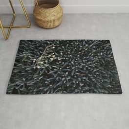 Bloom Where You're Planted Rug