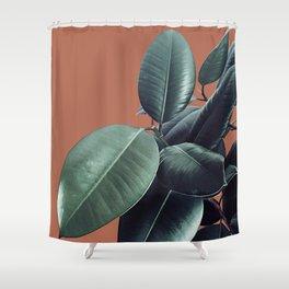 Ficus Elastica #17 #AutumnLeaf #foliage #decor #art #society6 Shower Curtain