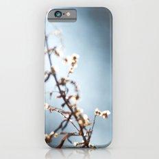 local celebrity iPhone 6s Slim Case