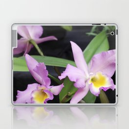 Cattleya Horace Maxima Orchid Laptop & iPad Skin