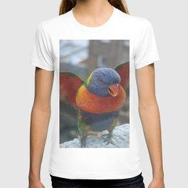 Wings DPG150701 T-shirt