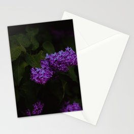 Lilac Summer Stationery Cards