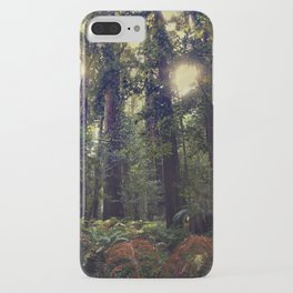 Sunrays in the Redwoods iPhone Case
