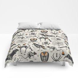 Halloween X-Ray Comforters
