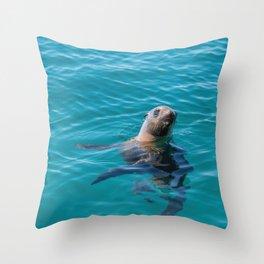 Baja Sea Lion Floating Vertically Throw Pillow