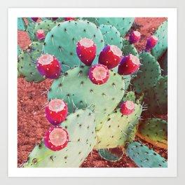 Cactus Candy Art Print