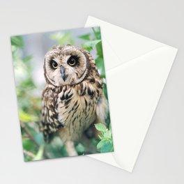"""OWL"" Stationery Cards"