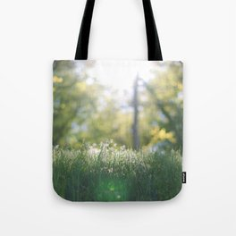 Grass in sunshine Tote Bag