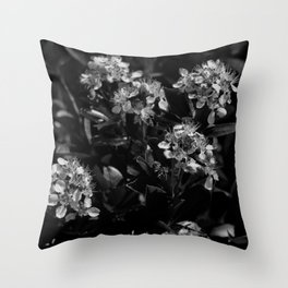 Stopping to Smell the Flowers at the Top of the Mountain Black & White Throw Pillow
