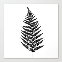 Fern silhouette Canvas Print