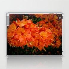 Give me an Orange, Julius Laptop & iPad Skin