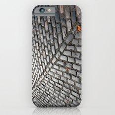 Leaves on cobblestones iPhone 6s Slim Case