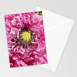 pink poppy macro XII Stationery Cards