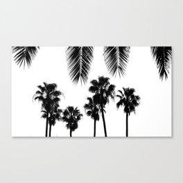 Palm Trees Santa Barbara Canvas Print