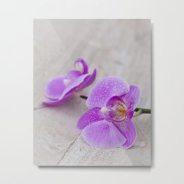 pink orchid flower close up water drops Metal Print