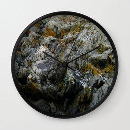 Coastal Rock Microcosms Wall Clock