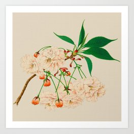 Fugen's Elephant Cherry Blossoms Art Print