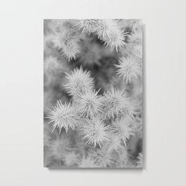 Cactus Detail Metal Print