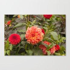 A Royal Flower Canvas Print