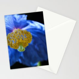 Blue Himalayan Stationery Cards