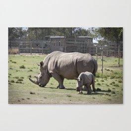 White Rhino and Calf Canvas Print