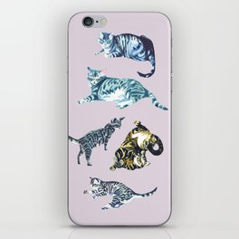 Little cats iPhone Skin